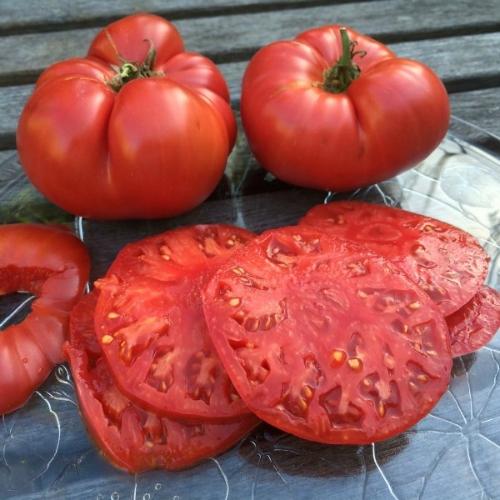 semi pomodori antichi